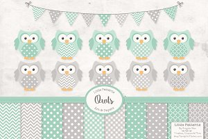 Mint & Grey Vector Owls & Papers