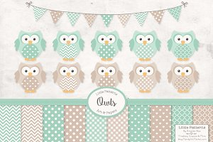 Mint Green Vector Owls & Papers