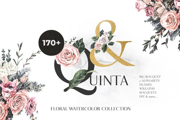 -50% QUINTA rose floral watercolor