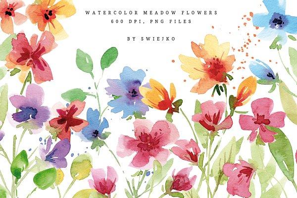 Meadow flowers, bouquet