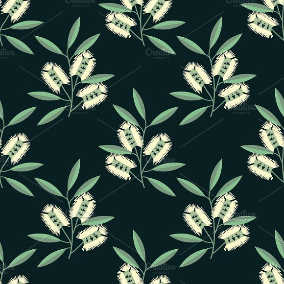 Cajeput flowers