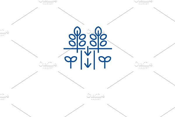 Plantation field line icon concept