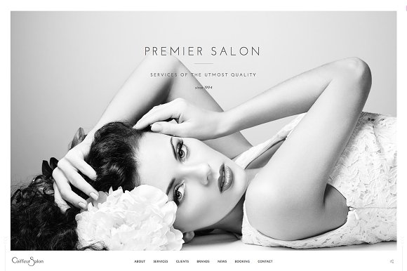 Salon - Elegant Full-Screen Theme