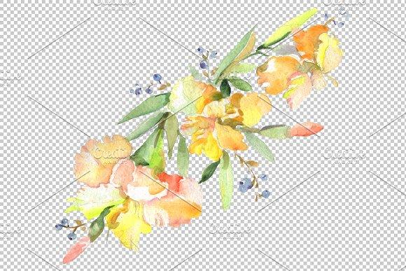 Bouquet Hoverla Watercolor png