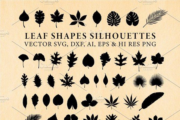 Leaf, Leaves Shapes Vector Pack