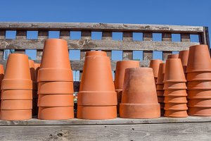 Clay pots for planting