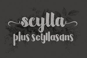 scylla & scyllasans