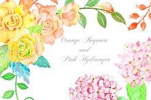 Orange Begonia and Pink Hydrangea