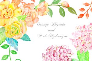 Orange Begonia and Pink Hydrangea