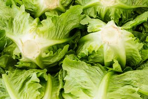 Romaine lettuce at market