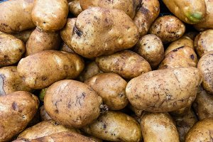 Russet potatoes at the market