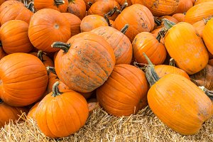 Pumpkins displayed at market