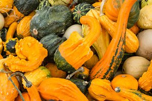 Ornamental gourds at market