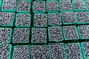 Boxes of blueberries at market