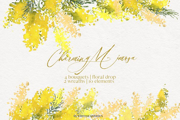Charming Mimosa - Yellow Flowers PNG