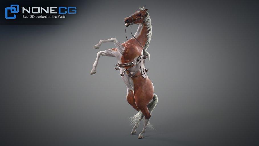 Animated Horses v3