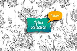 Linear lotus vector collection