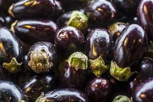 Round eggplant
