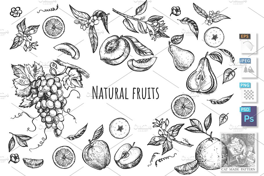 Collection hand drawn fruit