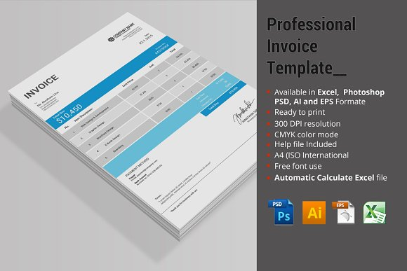 Professional Invoice Template Stationery Templates on Creative – Professional Invoice Template