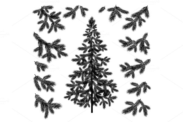 Christmas tree and branches