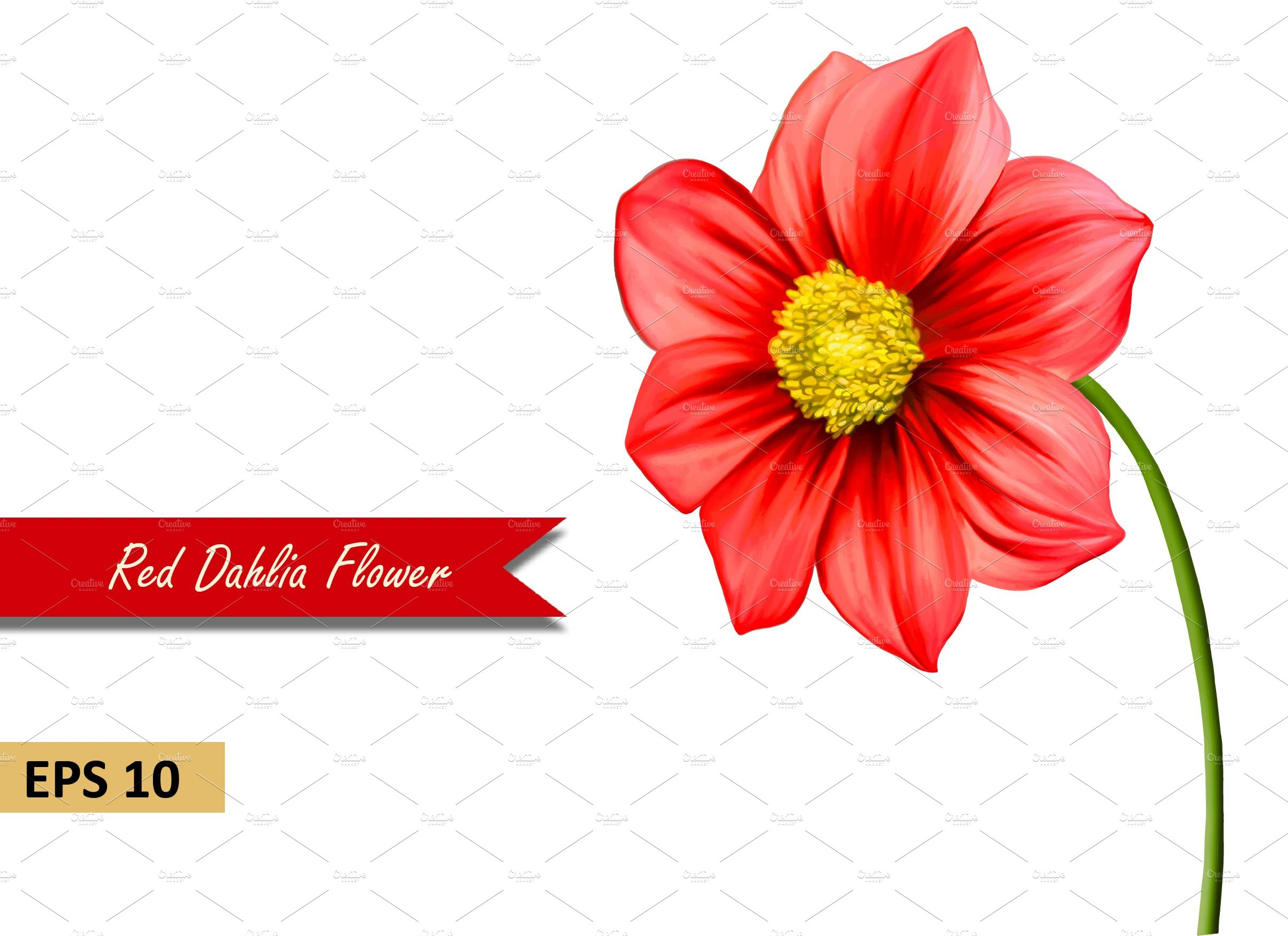 Red Dahlia Flower Graphic Objects Creative Market
