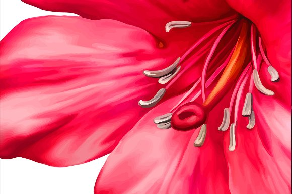 Beautiful Pink Flower. Vector in Objects - product preview 1