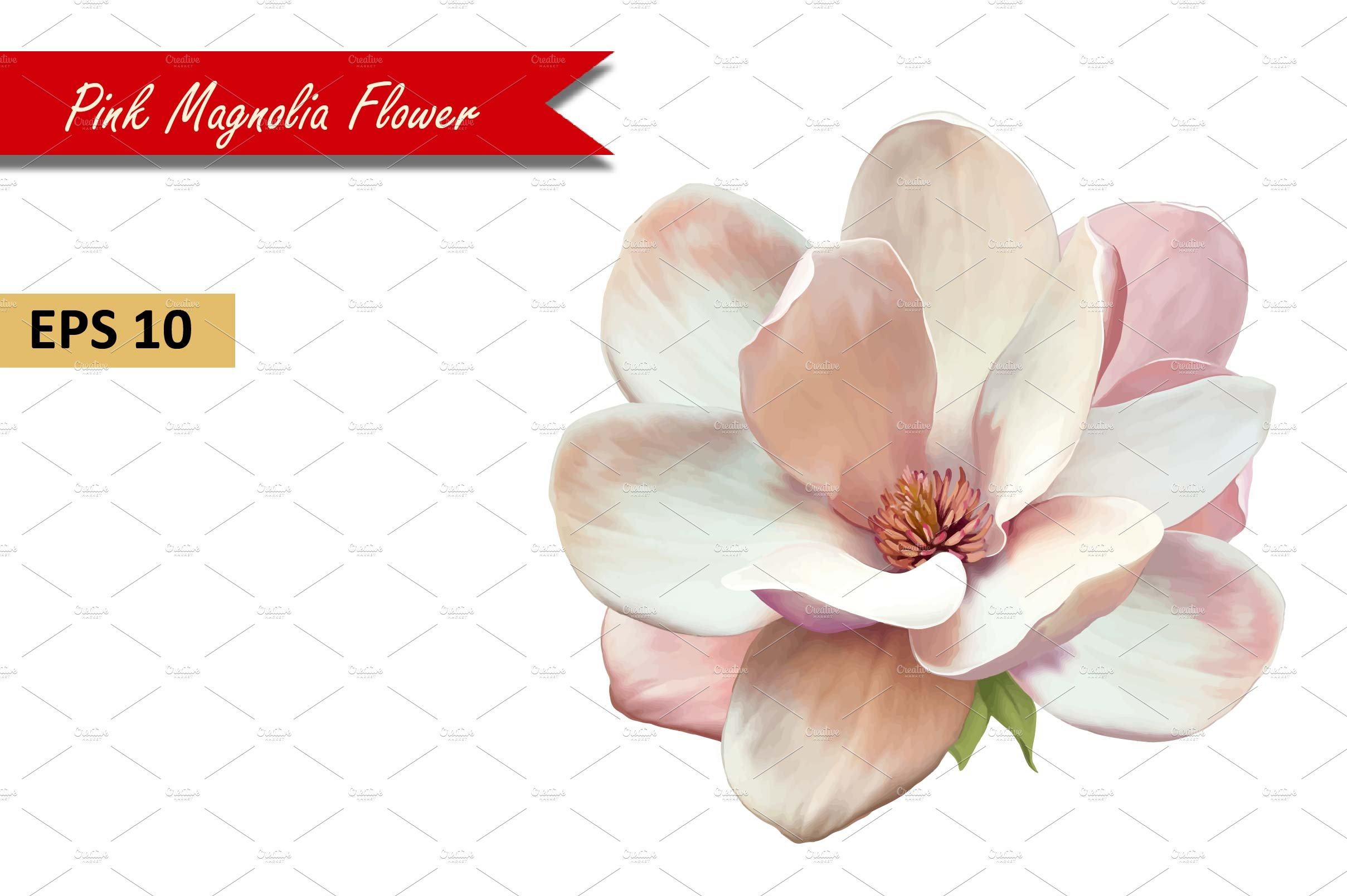 Pink Magnolia Flower Vector Graphic Objects Creative Market