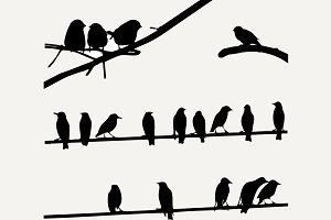 Birds on Wires, silhouette set