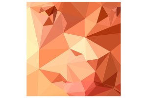 Tango Orange Abstract Low Polygon Ba