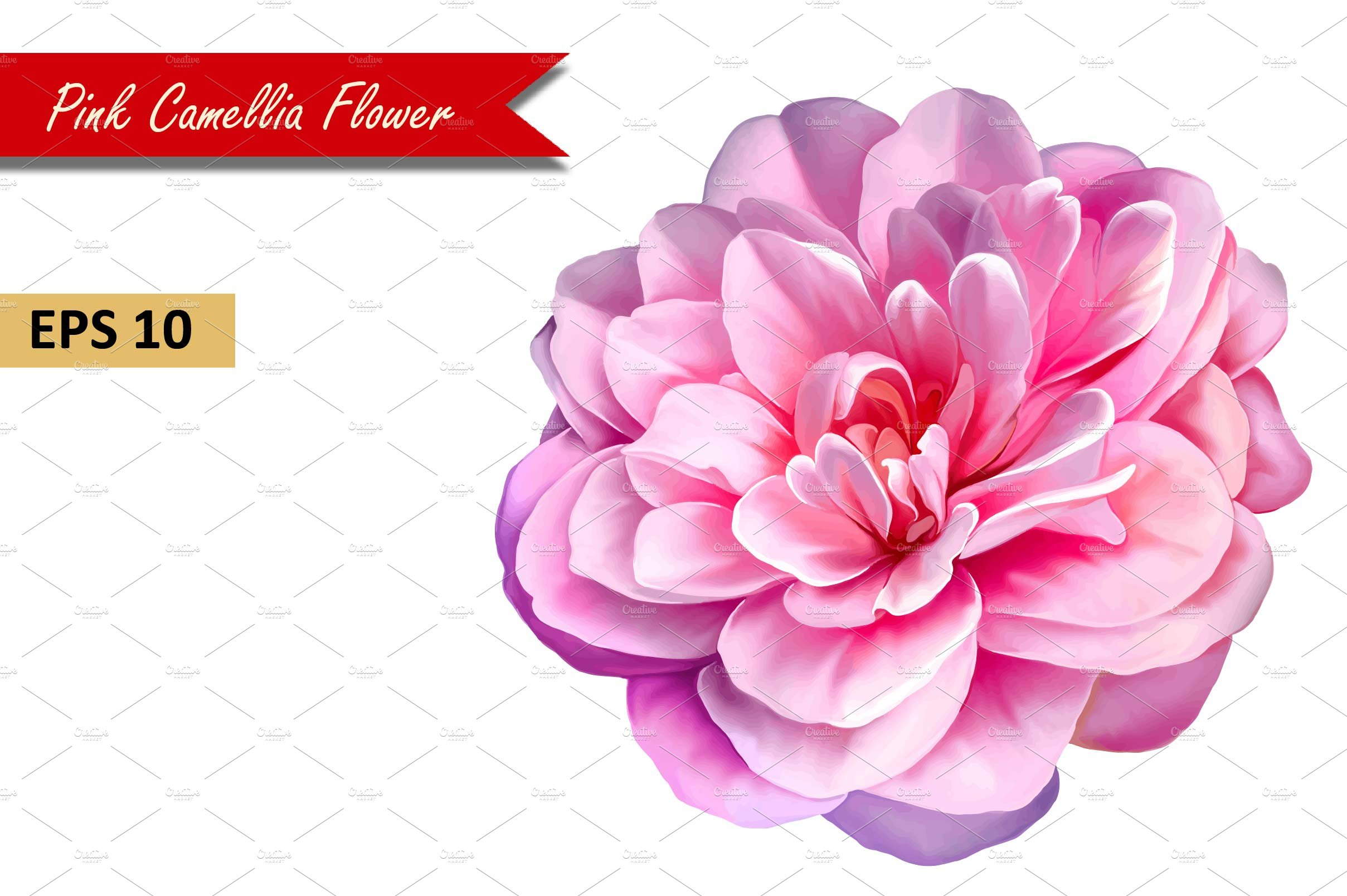 Pink Rose Camellia Flower Vector Graphic Objects Creative Market