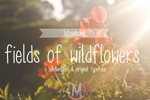 fields of wildflowers- hand font