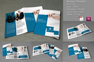 Bifold Business Brochure-V152