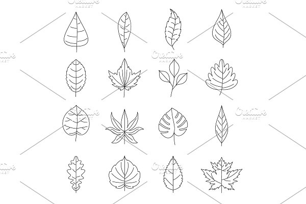 Plant leafs icons set, outline style