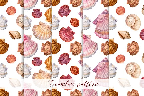 Set of seashells watercolor in Illustrations - product preview 4