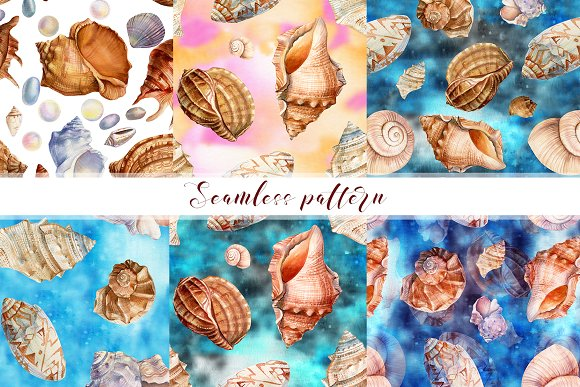 Set of seashells watercolor in Illustrations - product preview 5