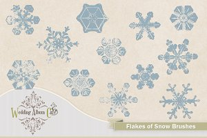 Flakes Of Snow Photoshop Brushes