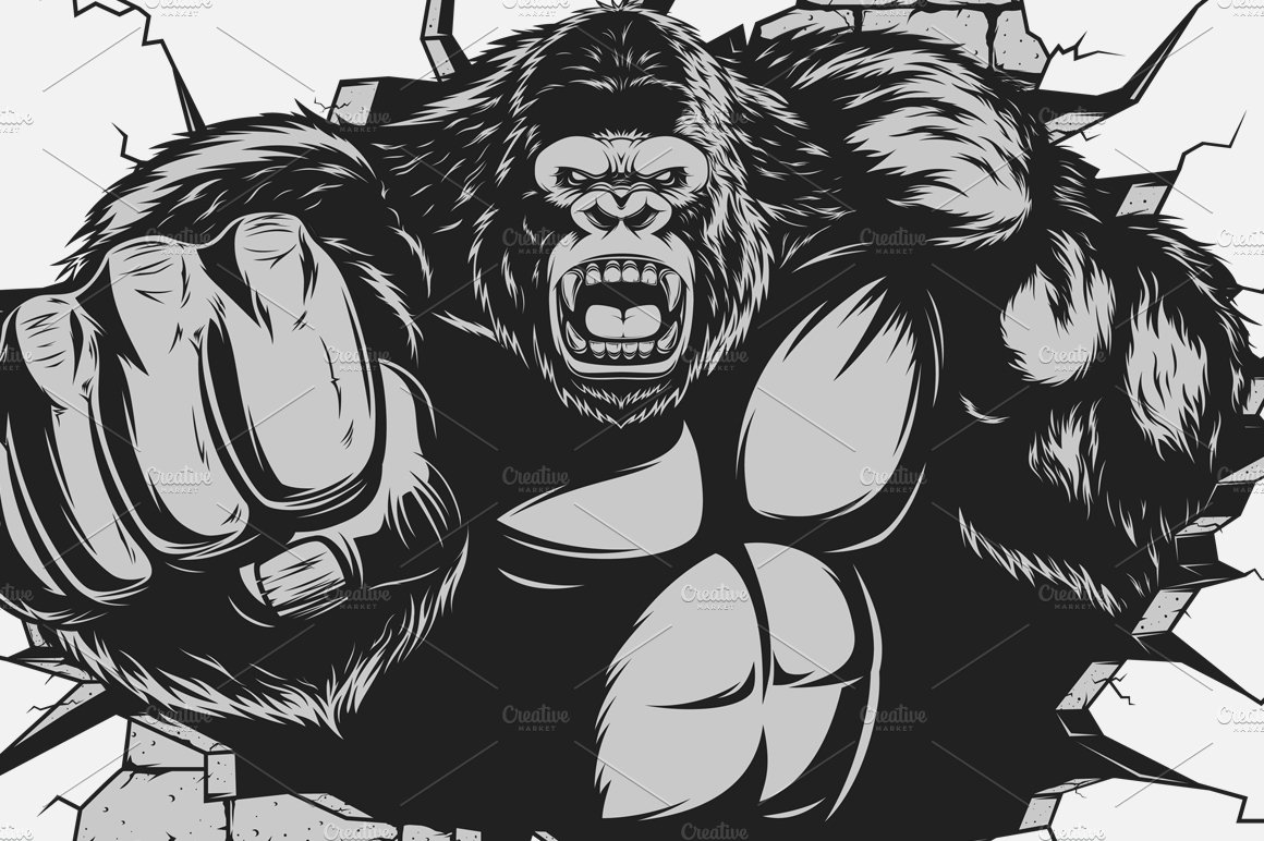 Gorilla Face Line Drawing : Angry gorilla illustrations creative market