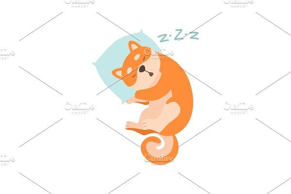 Shiba Inu Dog Sleeping on Pillow