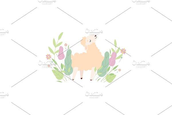 Cute Little Lamb on Green Meadow