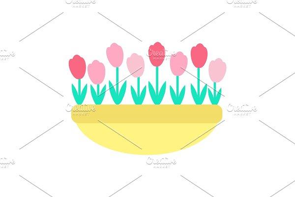 Tulips Grown in Clay Pot Vector