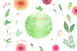 Watercolor plants collection