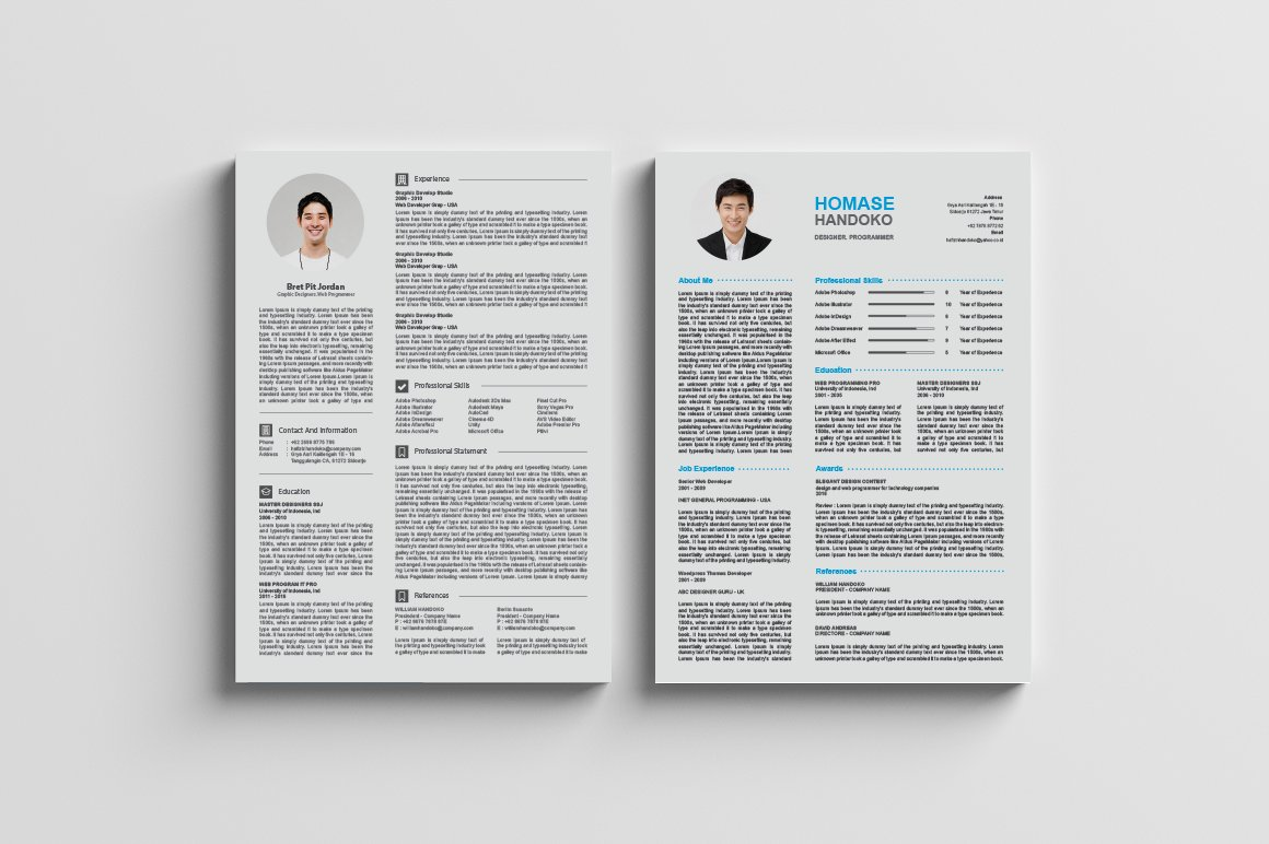 top 2 page cv resumes a4 resume templates creative market - 2 Page Resume