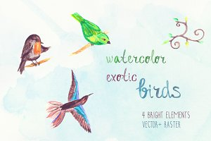 Watercolor exotic birds illustration
