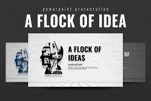 A Flock of Ideas