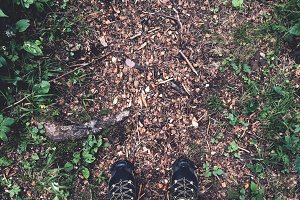 Running shoes on the forest path
