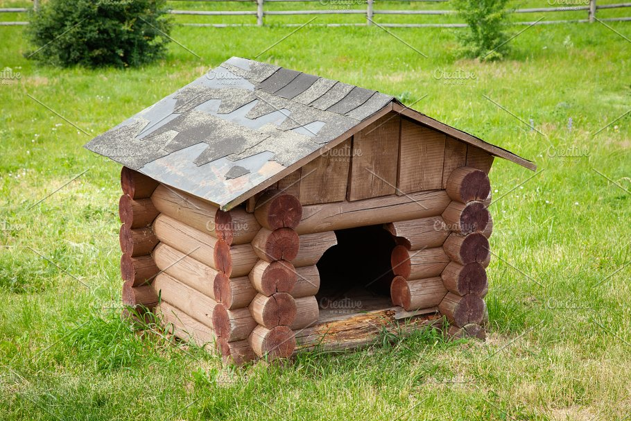 Wooden Dog House On Green Lawn Architecture Photos Creative Market