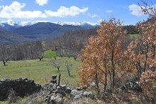 Sierra de Gredos Landscape. Spain