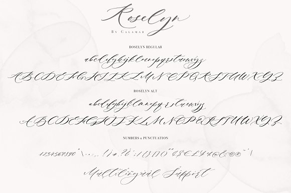 Roselyn Script in Script Fonts - product preview 5