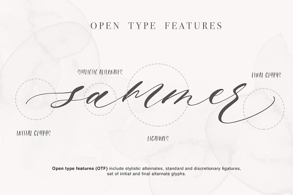 Roselyn Script in Script Fonts - product preview 6